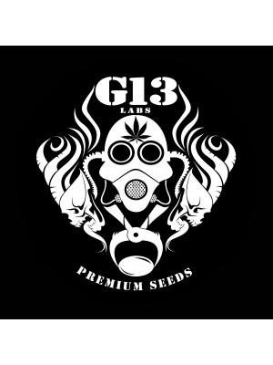 G-13 Labs